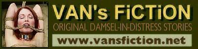 Vans Bondage Fiction 33